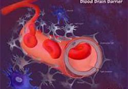 J Pharm Biomed Anal:血液检测证实我们对饮料的喜爱程度