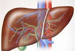 Lancet:奥贝胆酸治疗非酒精性脂肪性肝炎III期临床获得成功