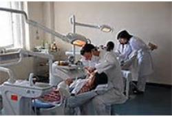 J Endod:不同牙本质处理剂对生长因子释放、间充质干细胞粘附和形态的影响
