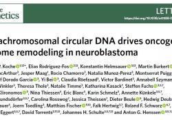 """Nat Gene:儿童癌症元凶,染色体外<font color=""""red"""">环状</font>DNA?"""