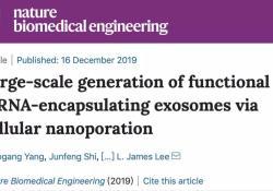 "Nat <font color=""red"">Bio</font> Engineer:显著提高外泌体产量和核酸包载效率,基因治疗取得新进展!"