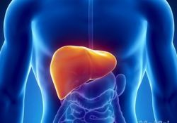 "J hepatology: 肝静脉压梯度对肝硬化择期肝外手术患者的预后<font color=""red"">预测</font><font color=""red"">作用</font>"