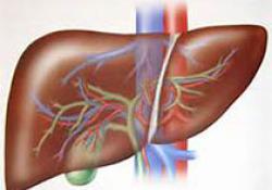"Gastroenterology:非侵入性<font color=""red"">肝</font><font color=""red"">纤维</font><font color=""red"">化</font>评估用于严重肝病风险预测"