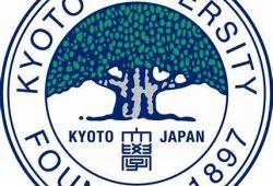 诱导多能干细胞(iPSC):日本京都大学团队计划将iPSC衍生的软骨移植到膝关节中