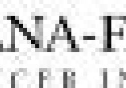 """临床前实验证实:Itolizumab治疗<font color=""""red"""">移植</font><font color=""""red"""">物</font><font color=""""red"""">抗</font><font color=""""red"""">宿主</font><font color=""""red"""">病</font>或可提高生存率并降低疾病严重性"""