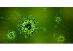 """默克针对<font color=""""red"""">革兰氏</font>阴性菌感染的抗生素组合Recarbrio,获得FDA的优先审查"""