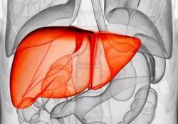 "J Clin Gastroenterol:<font color=""red"">肝硬化</font>的脑卒中风险"