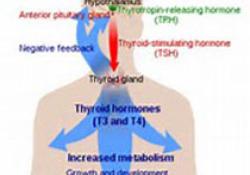 NEJM:VE醋酸酯或是电子烟相关性肺损伤致病因素
