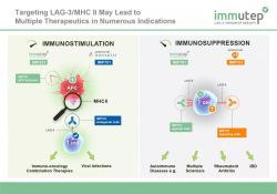"NSCLC一线治疗:LAG-3抗体显著增强<font color=""red"">Keytruda</font>的疗效,ORR达到47%!"