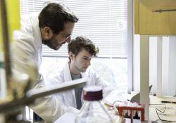 """Science:剖析新冠病毒<font color=""""red"""">S</font>蛋白结构,助力疫苗研发"""