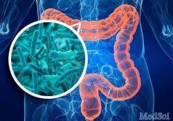 Clin Gastroenterology H: 粪菌移植治疗对儿童艰难梭菌感染的疗效