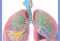 Ann Intern Med:慢性阻塞性肺疾病加重患者的药物治疗