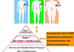 """Hypertension:孕早期血压高于130/<font color=""""red"""">80</font> mmHg有风险!上海4.7<font color=""""red"""">万</font>孕妇研究称,易出现妊娠期糖尿病、早产和低<font color=""""red"""">出生</font>体重<font color=""""red"""">儿</font>"""
