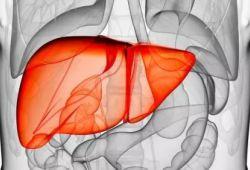患者很瘦,检查却有脂肪肝,要不要治疗?