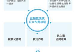 临床应用广泛的黏液动力药——中国首个氨溴索雾化吸入剂易安平®上市