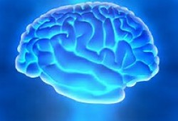 Stroke:脑小血管病对颅内出血后功能恢复有何影响?